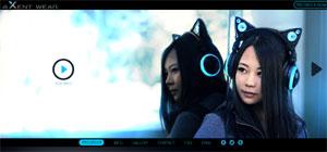 Cat headphone