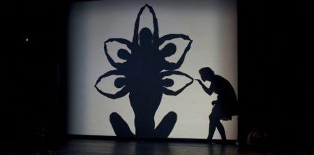 Lichttechnik-Shadowland-Show