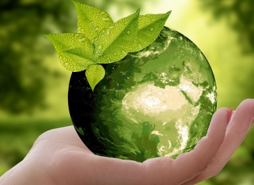 Green Event Space Contest: Wettbewerb zum Showcase der Zukunft